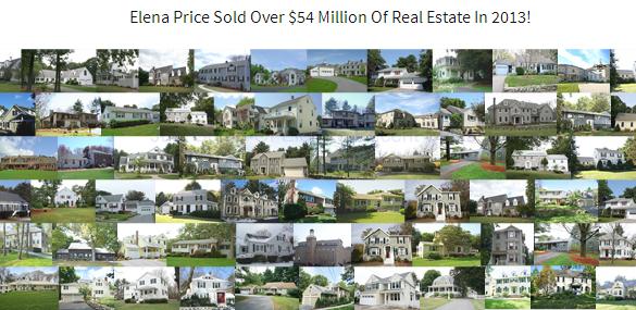 Elena Price Real Estate